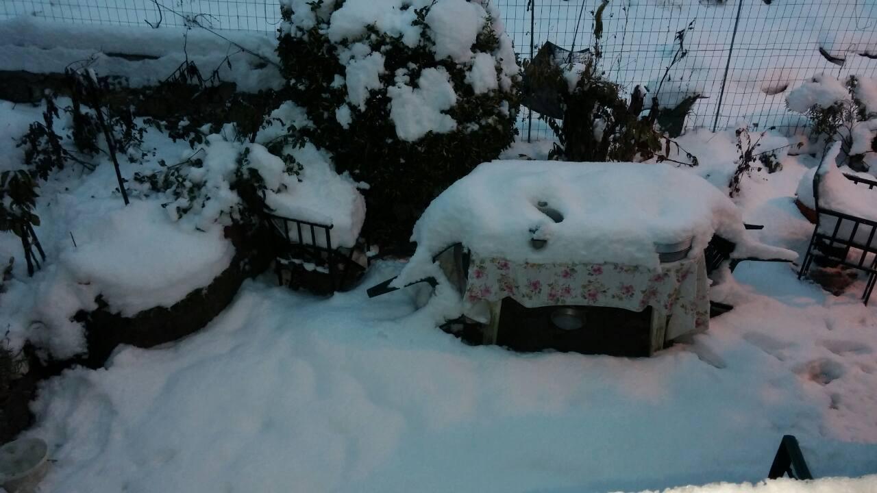 Δείτε πόσο χιόνι έπεσε στο χωριό μας!